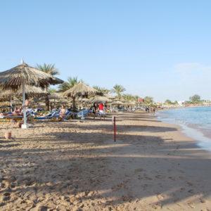 Подборка туров в Египет
