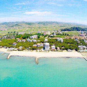 Горящая Албания из Минска